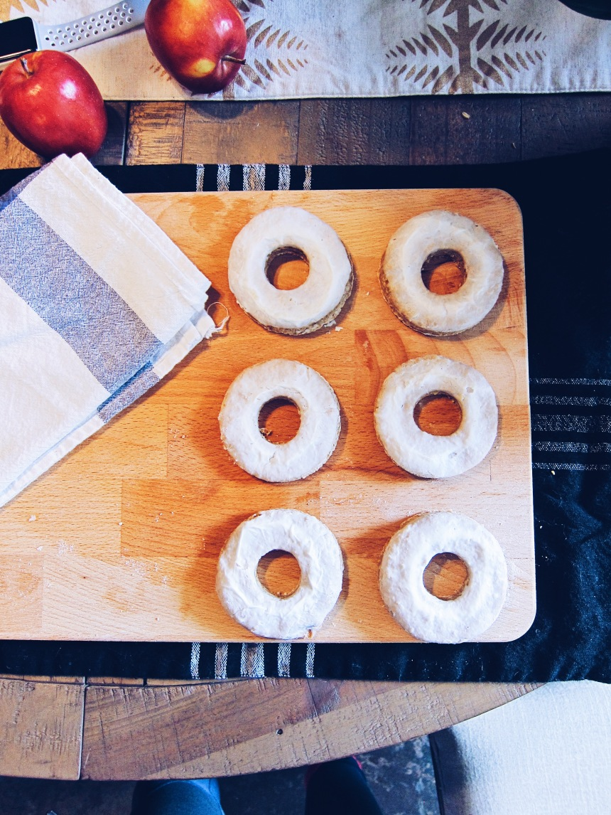 apple cinnamon dog donuts